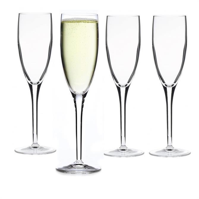 Luigi Bormioli Michelangelo Masterpiece Set Of 4 Champagne Flutes