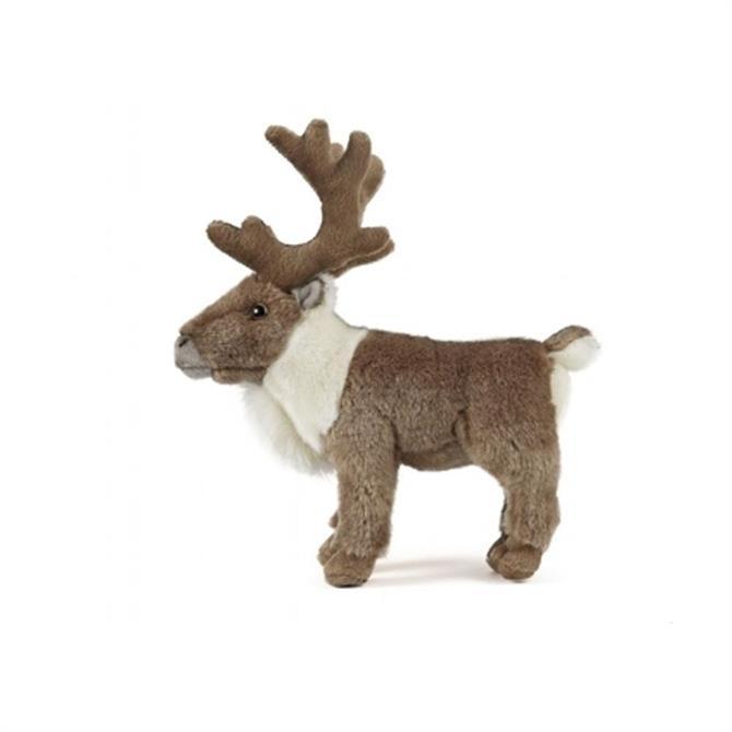 Living Nature Reindeer Standing