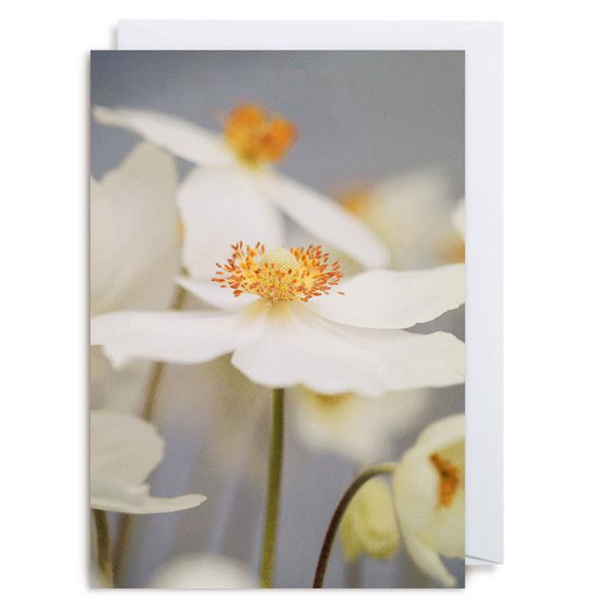 Lagom Alicia Bock Card