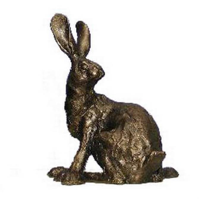 Blue Poppy Frith Humphrey Hare