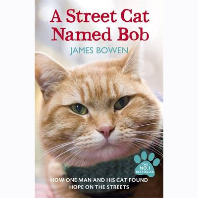 An image of A Street Cat Named Bob by James Bowen (Paperback)