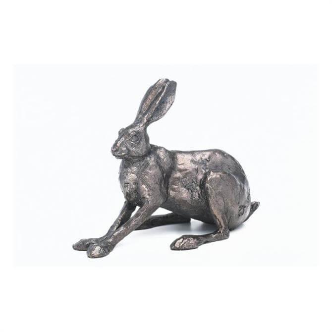 Blue Poppy Frith Hilary Hare