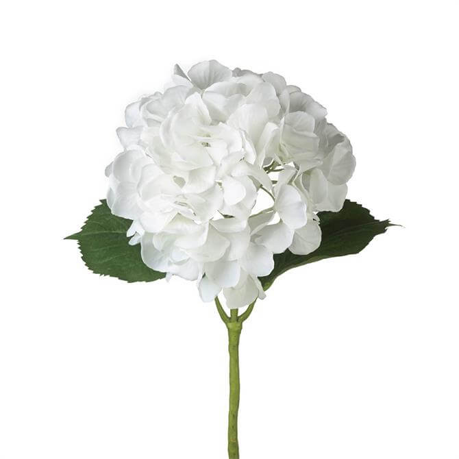 Parlane Hydrangea Stem-White