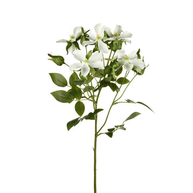 Parlane White Rose Wild Stem