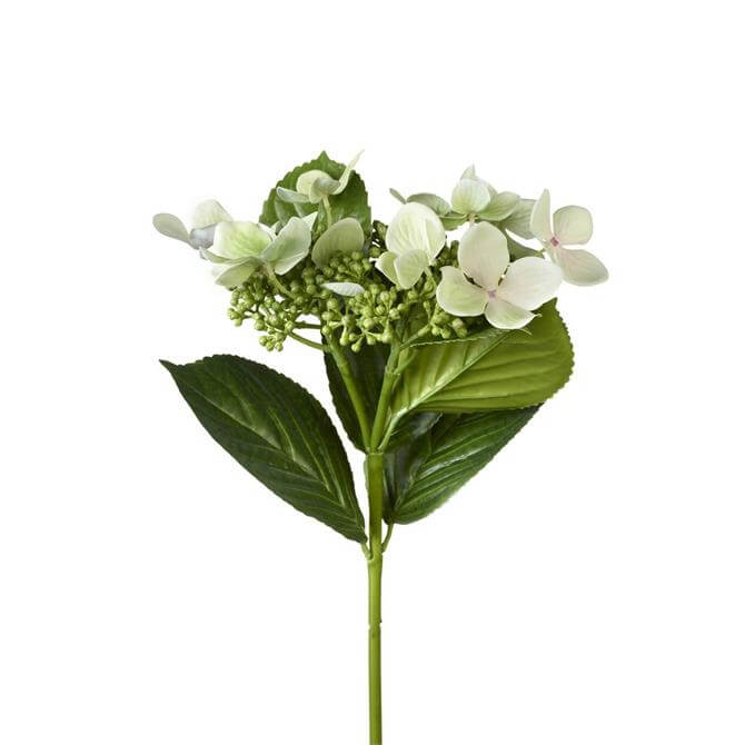 Parlane Hydrangea Stem with Buds