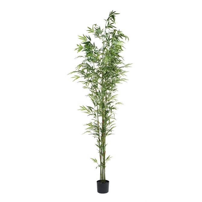 Parlane Bamboo Tree with Leaves