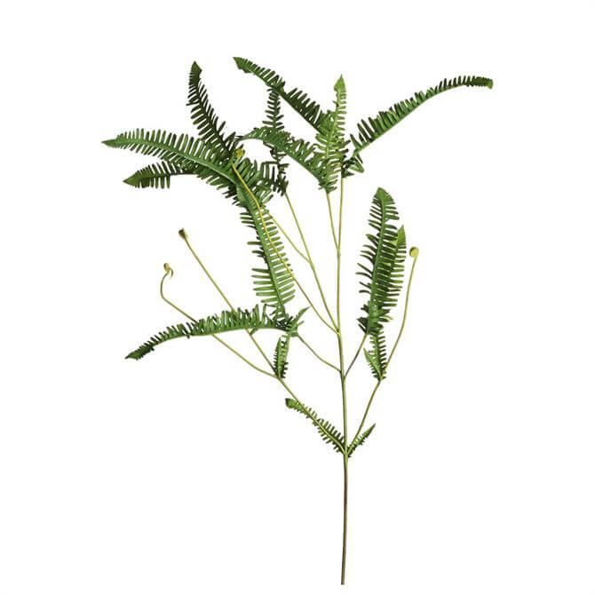 Parlane Fern Spray