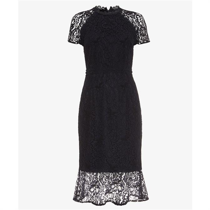 Phase Eight Mabel Lace Dress Navy