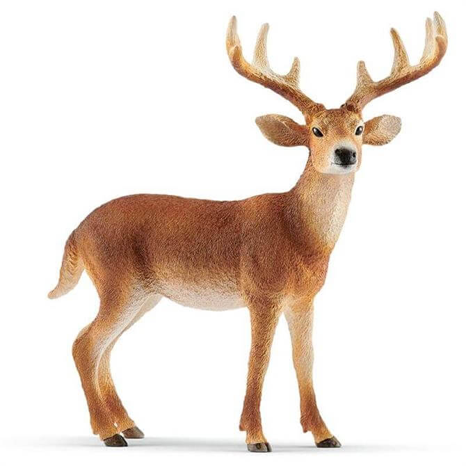 Schleich White Tailed Buck 14818