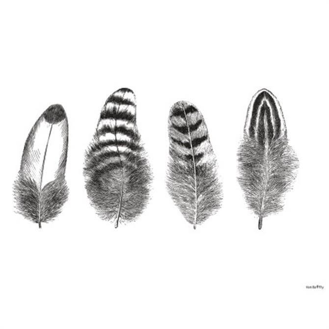 VanillaFly Four Feather Design Poster
