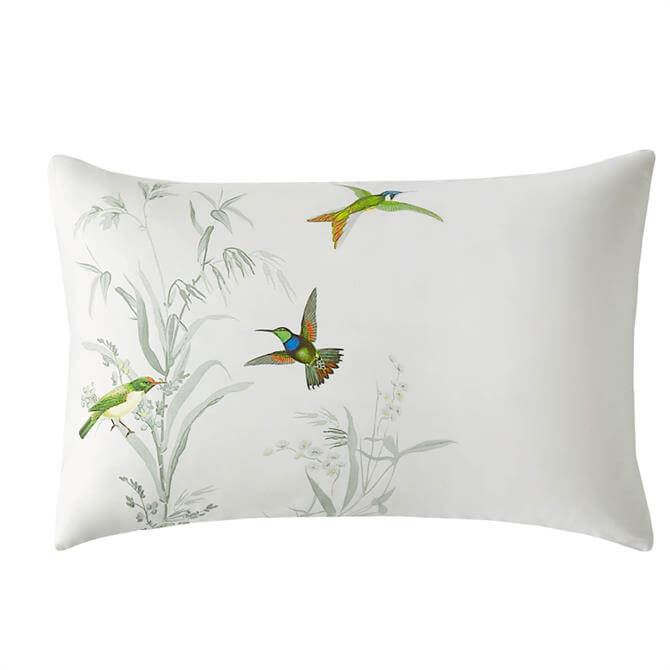Ted Baker Fortune Pair of Pillowcases